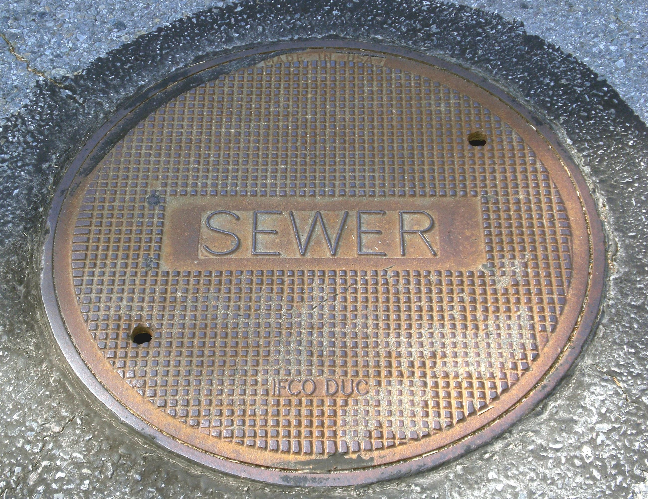 Sewer_cover pic
